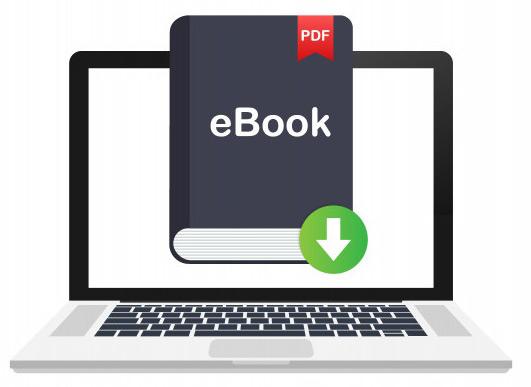 free-roi-e-book